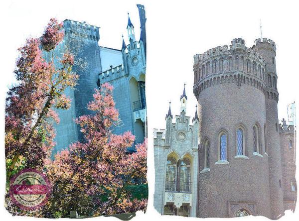 wieze w zamku w korniku